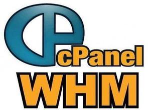 带有cPanel面板的香港主机有哪些优势?